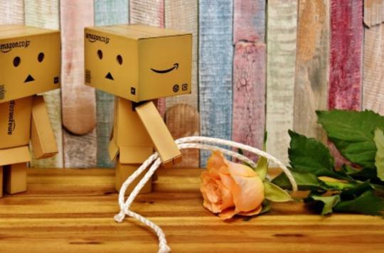 挽回爱情技巧在线阅读:形成爱情的最佳途径